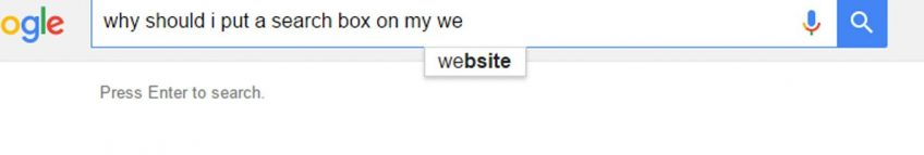 5 Reasons a Search Box on your site will help you sell more!